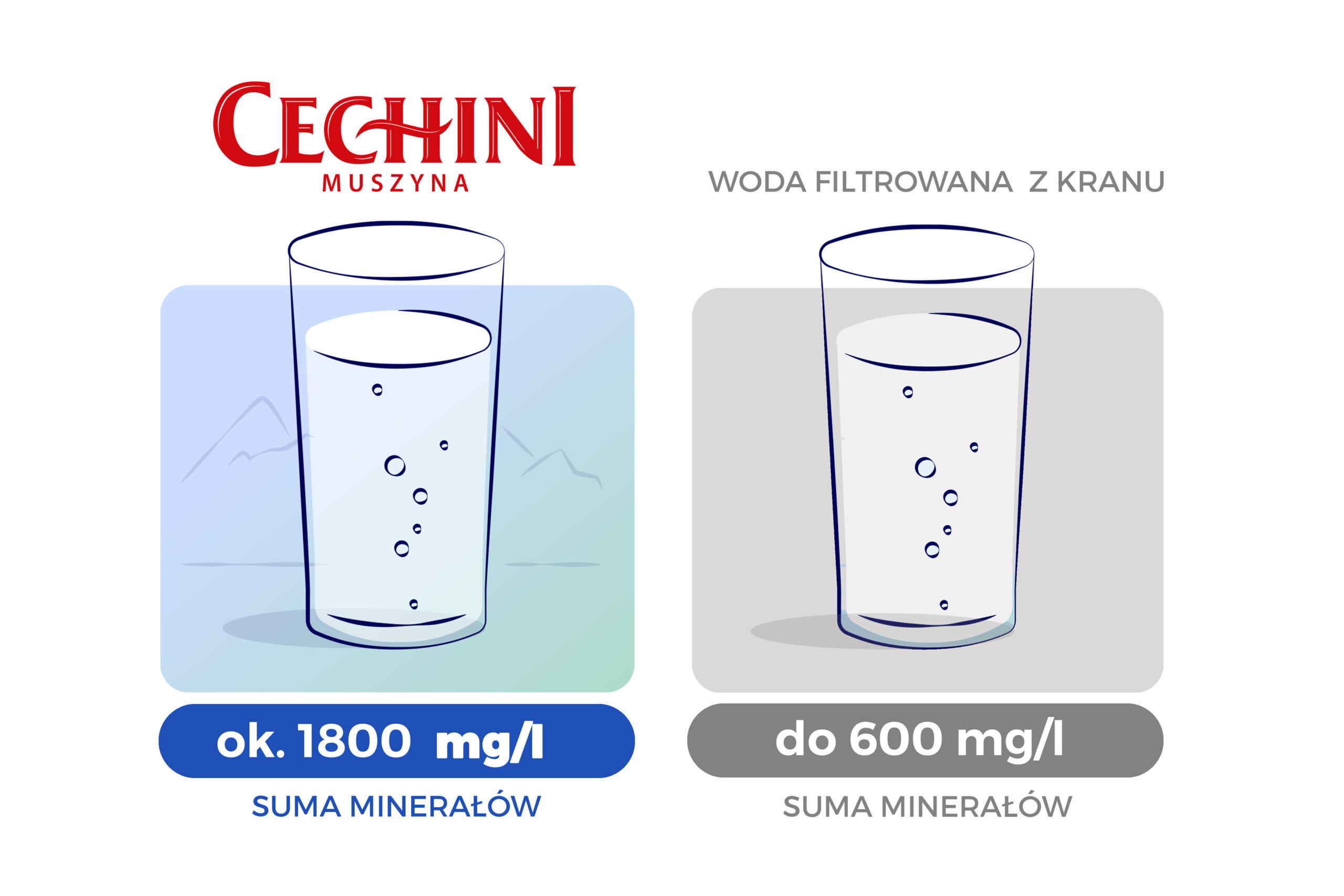 Cechini muszyna vs woda kranowa