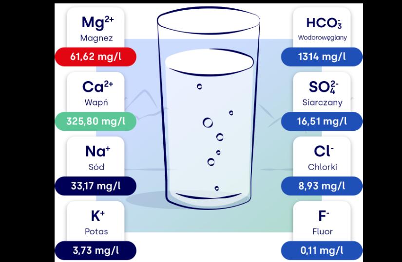 skład wody Cechini Muszyna