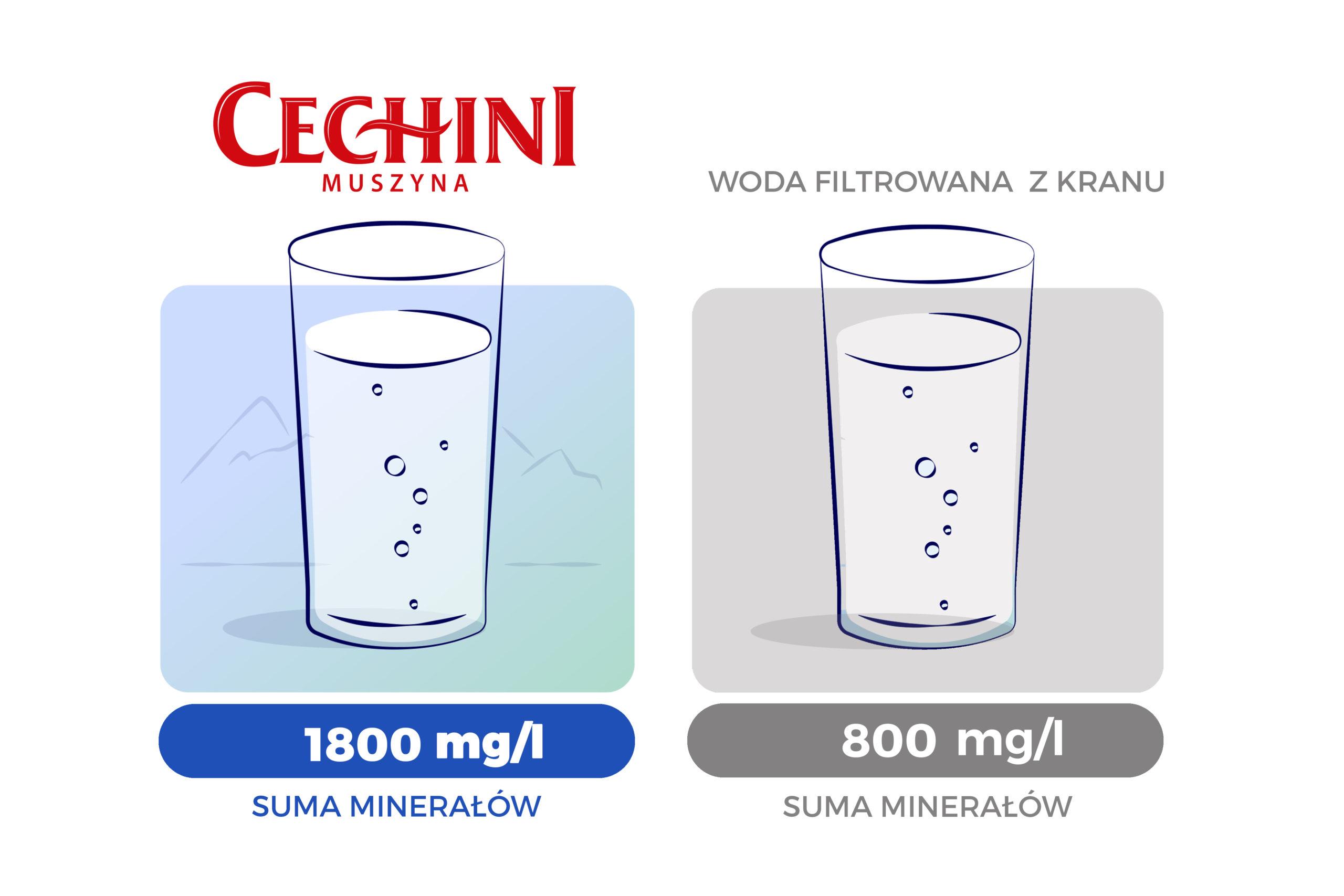 woda filtrowana vs woda Cechini